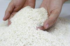 обильная поставка риса стоковое изображение