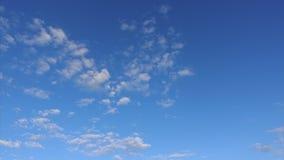 Облака двигают красиво через яркое голубое небо, промежуток времени сток-видео