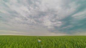 Облака изменяют их форму двигают акции видеоматериалы