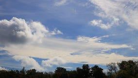 Облака кумулюса двигая в голубое небо видеоматериал