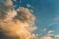 Облака на заходе солнца и птицах летая в небо Стоковое Изображение RF