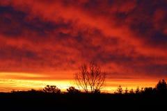 Облака на пожаре Стоковые Фотографии RF