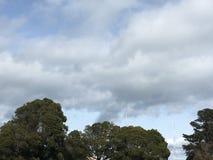Облака цирруса над верхними частями дерева и парой красных и белых башен перехода Стоковое Изображение RF