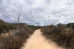 Облака шторма заваривая над следом в сухом засушливом ландшафте Стоковые Изображения