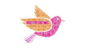Облако слова пищеварительных ферментов иллюстрация вектора