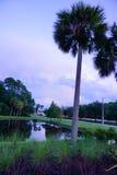 Облако солнца Флориды установленное Стоковые Изображения RF