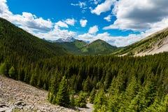 Область озер опарника соленья в лете Стоковая Фотография