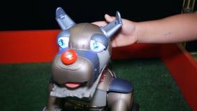 Область Челябинска, Челябинска/Россия - 07 10 2019: Робототехническая собака с рукой ребенка сток-видео