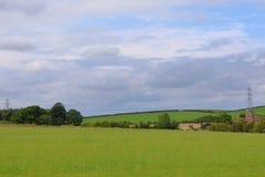 Облачное небо над полем стоковая фотография rf