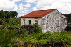 облицеванная старая дома Стоковые Изображения RF