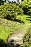 Облицеванные лестницы в японском саде Стоковая Фотография RF