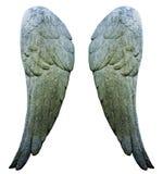 Облицуйте крыла стоковая фотография rf