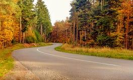Обматывая смоленая дорога через деревья осени стоковые фотографии rf