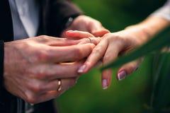 Обменяйте кольца для wedding регистрации замужества между женихом и невеста Стоковые Изображения