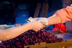 Обмен наличных денег на фруктовой лавке улицы Стоковые Фото