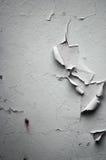 обнажанная белизна стены Стоковые Изображения RF