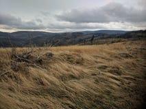 Обнажанные горные склоны в горе Biskupia Kopa стоковое фото rf