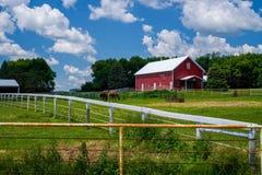 2 обнесенной забором лошади, Минесота стоковые изображения