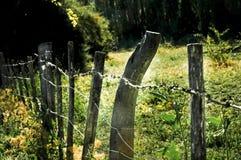 Обнести долина Стоковые Фотографии RF