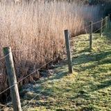 Обнести забором Солнце Стоковое Фото