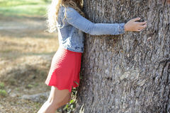 обнимать вал Конец-вверх рук обнимая дерево Стоковые Изображения RF