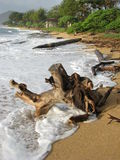 обнимать валы берега Стоковая Фотография
