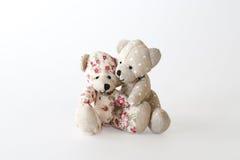 Обнимать 2 милый медведей стоковое изображение rf