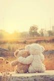 Обнимать плюшевых медвежоат влюбленности пар Стоковые Изображения RF