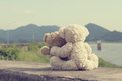Обнимать 2 плюшевых медвежоат Стоковые Фото