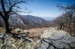 Обозите в горы голубого Ридж вдоль привода горизонта в национальном парке Shenandoah во время предыдущей весны с обнаженными дере стоковые изображения rf
