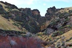 обозревая каньон Owyhees заводи скачки Стоковое фото RF