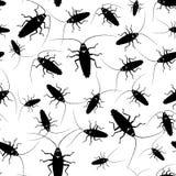 обои вектора таракана безшовные Стоковые Фотографии RF
