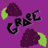Обои иллюстрации виноградины Стоковые Фотографии RF