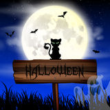 Обои ночи хеллоуина с котом и полнолунием Стоковые Изображения RF