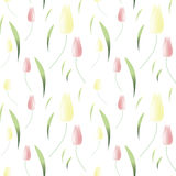 Обои предпосылки с тюльпанами весны также вектор иллюстрации притяжки corel Стоковые Изображения RF