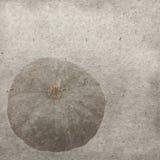 обои сбора винограда вектора картины eps 10 предпосылок пурпуровые Стоковая Фотография