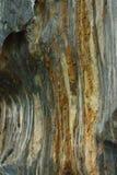 Обои стен пещеры Стоковые Изображения RF