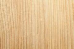 Обои текстуры дерева бука Стоковое фото RF