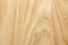 Обои текстуры дерева бука Стоковое Фото