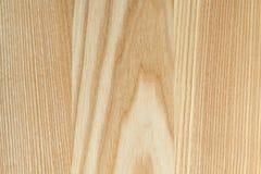 Обои текстуры дерева бука Стоковые Изображения