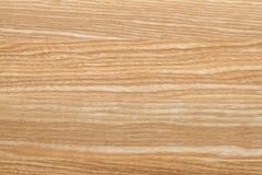 Обои текстуры дерева бука Стоковая Фотография