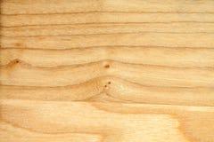 Обои текстуры дерева бука Стоковое Изображение RF