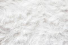 Обои текстуры предпосылки меха шерстей овец Стоковые Фото