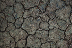 Обои, треснутая почва Стоковые Изображения