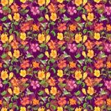 Обои цветка гибискуса Стоковое Изображение