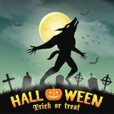 Оборотень силуэта хеллоуина в погосте ночи Стоковое фото RF