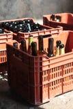 Оборудование винодельни, бутылки вина в красных коробках Стоковое Изображение