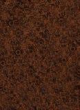оборудованная кожа Стоковое Фото