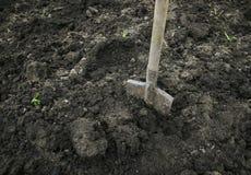 Оборудуйте лопаткоулавливатель вставленный в земле в саде весной для стоковые изображения rf