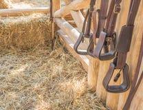 оборудование верховой лошади Стоковые Фотографии RF